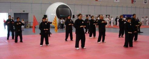 Exhibición de Qigong en EIAM, Encuentro Internacional de Artes Marciales, Palau Sant Jordi
