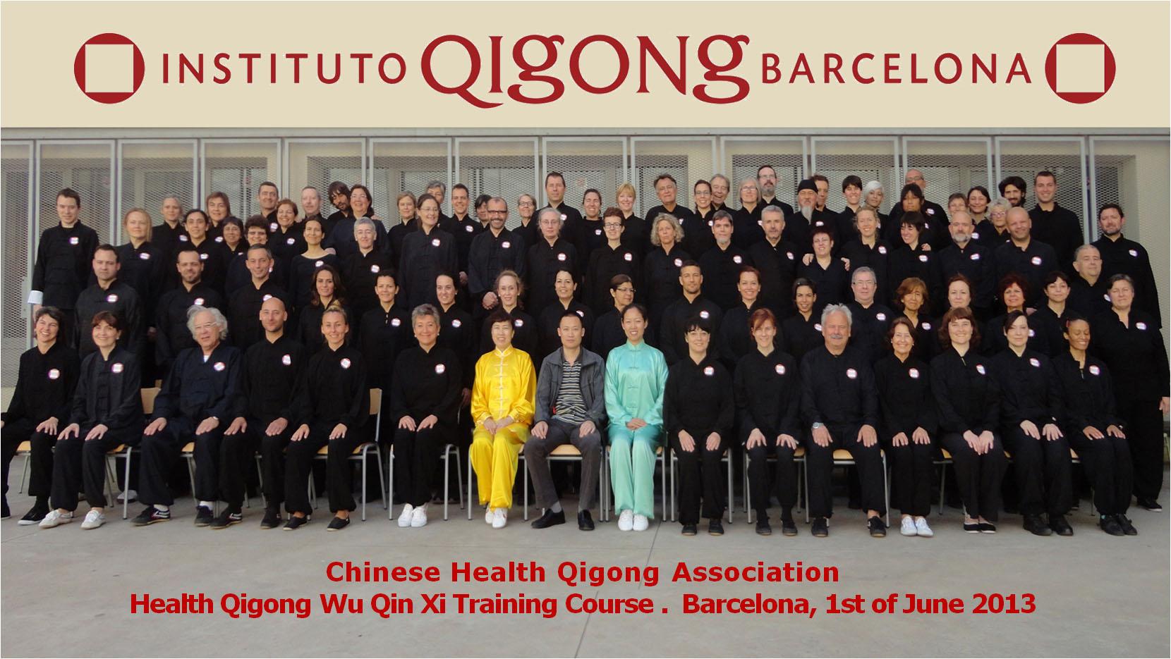 Curso de Perfeccionamiento Técnico Wu Qin Xi