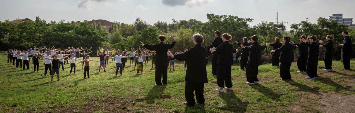 Día Internacional Qigong de Salud